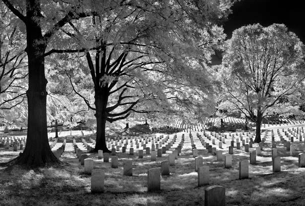 Гробището Arlington-cemetery-615